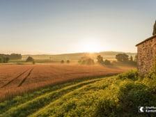 Blick in die Ferne bei Dörflingen im Kanton Schaffhausen